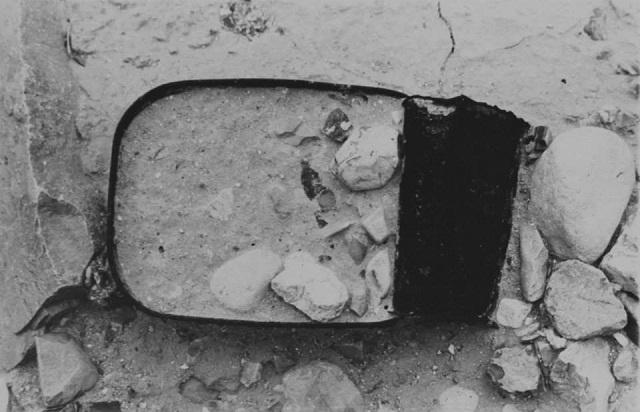אביב יצחקי ים המלח 1973 - 1