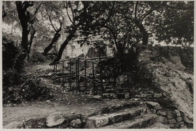 גן נתן בחיפה